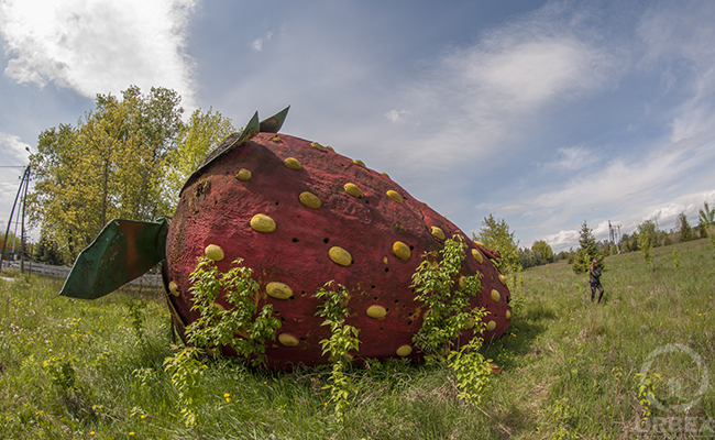 Unusual Urbex – Abandoned Strawberry Next To The Road