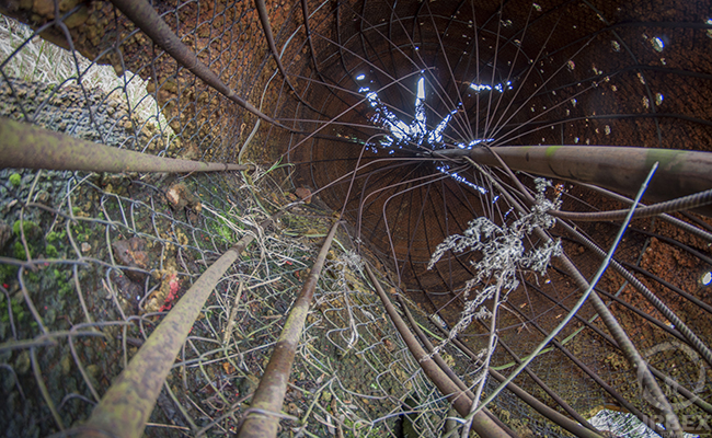 inside abandoned strawberry