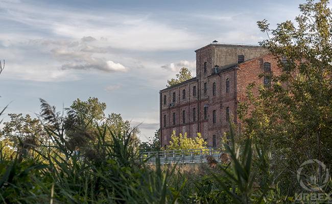 Urbex Water Mill