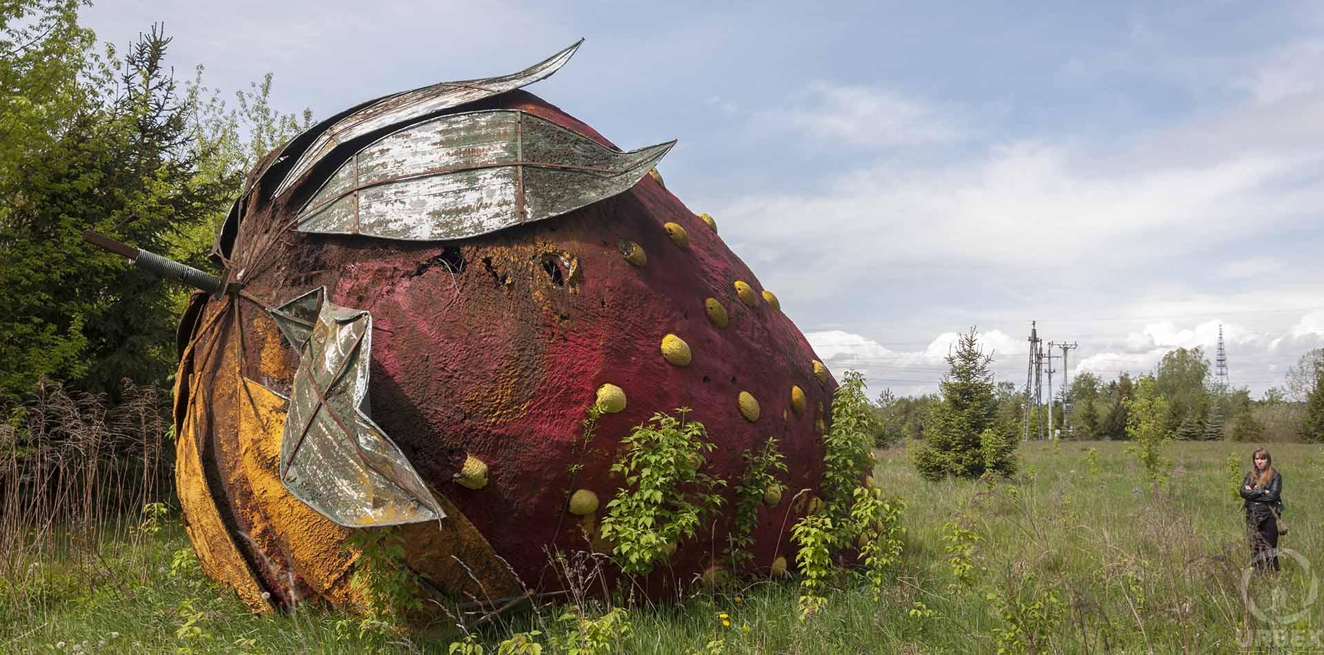 Abandoned Strawberry Poland
