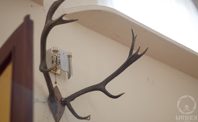 hunting trophy on urbex
