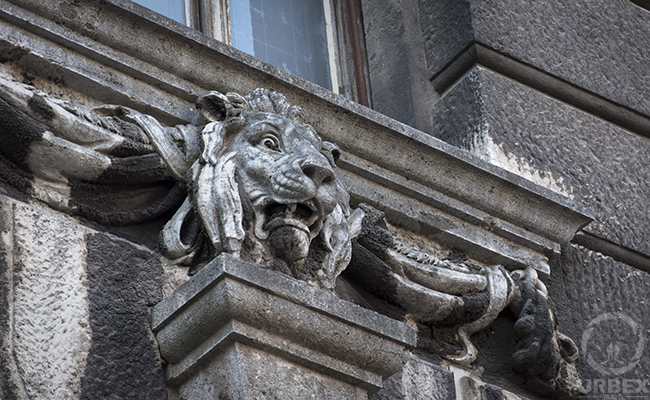 a lion on the facade of an abandoned palace in Budapest