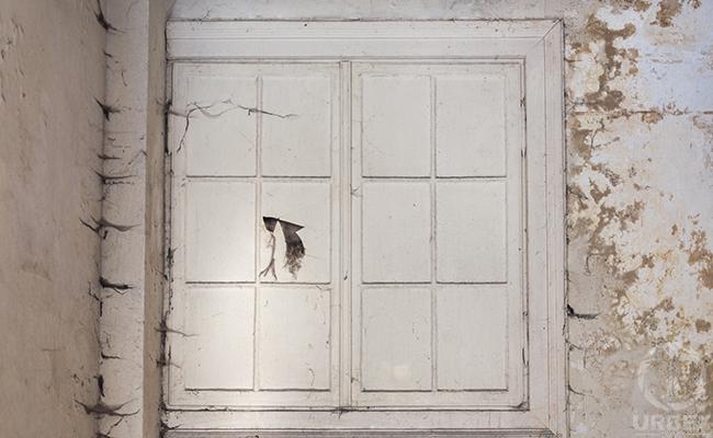 a window on urbex