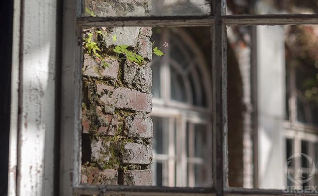 brocken window in abandoned palace