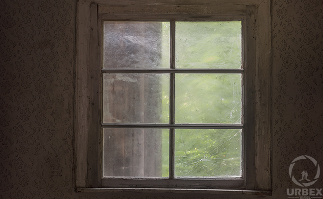 windows in a haunted lodge in the middle of the forest