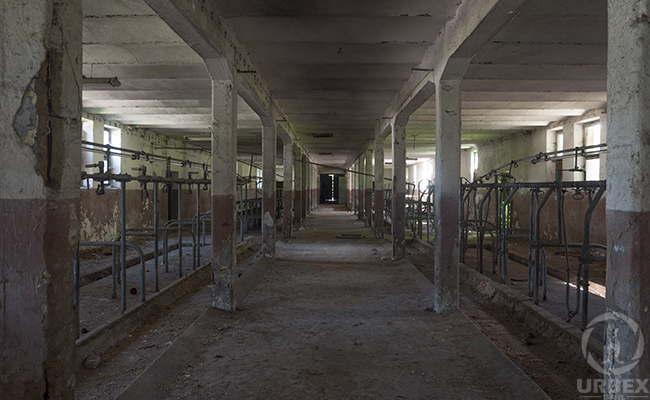 Abandoned Part Of Agriculture University – An Old Farm in The Heart Of Poland