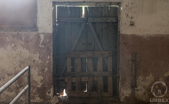 the old doors