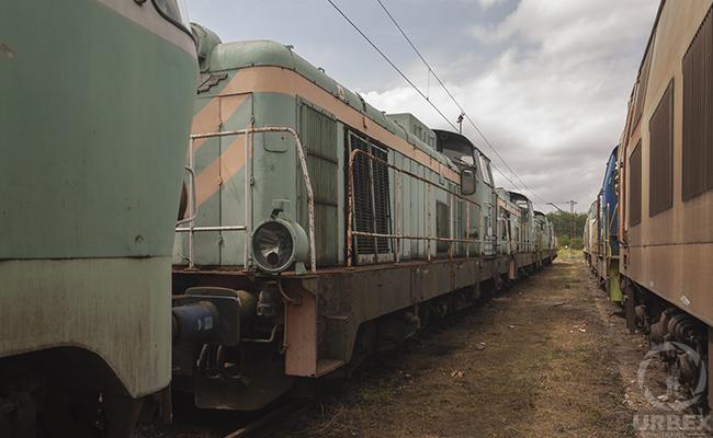 diesel electric train