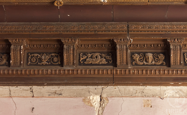 brown molds in an abandoned chateau