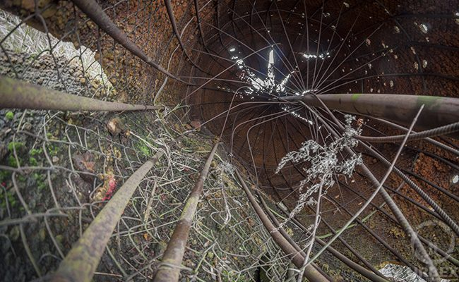 inside an abandoned strawberry